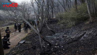 Photo of Japonya alevlere teslim…106 hektar alan kül oldu